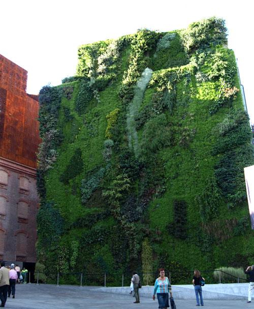 Patrick-blanc-vertical-gardens-b