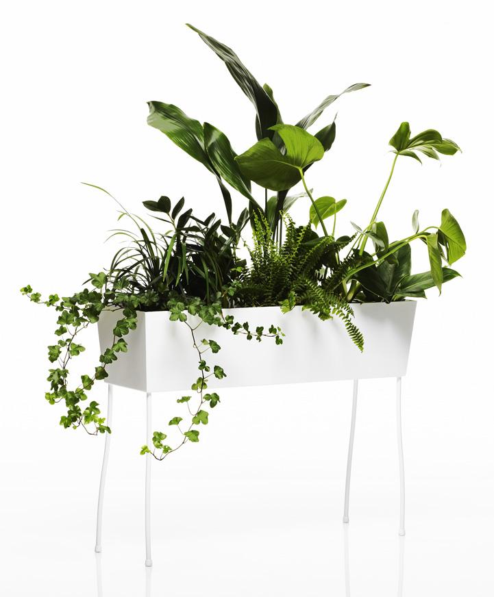 Offecct-front-green pedestals-b