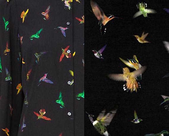 Mcq-hummingbirds-1a